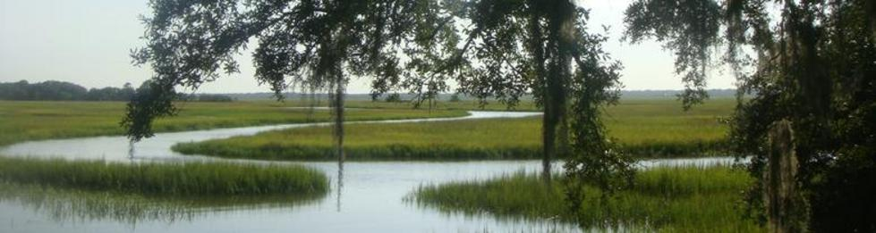 Marshes of Glynn County in the Golden Isles of Georgia
